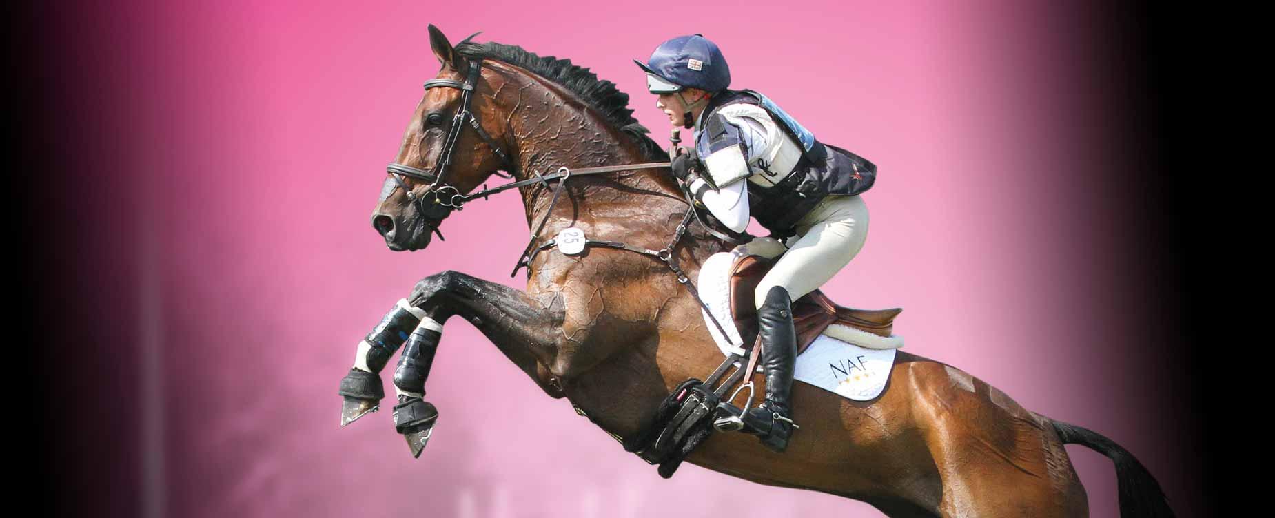 Ons doel is om uw paard in perfecte conditie te houden