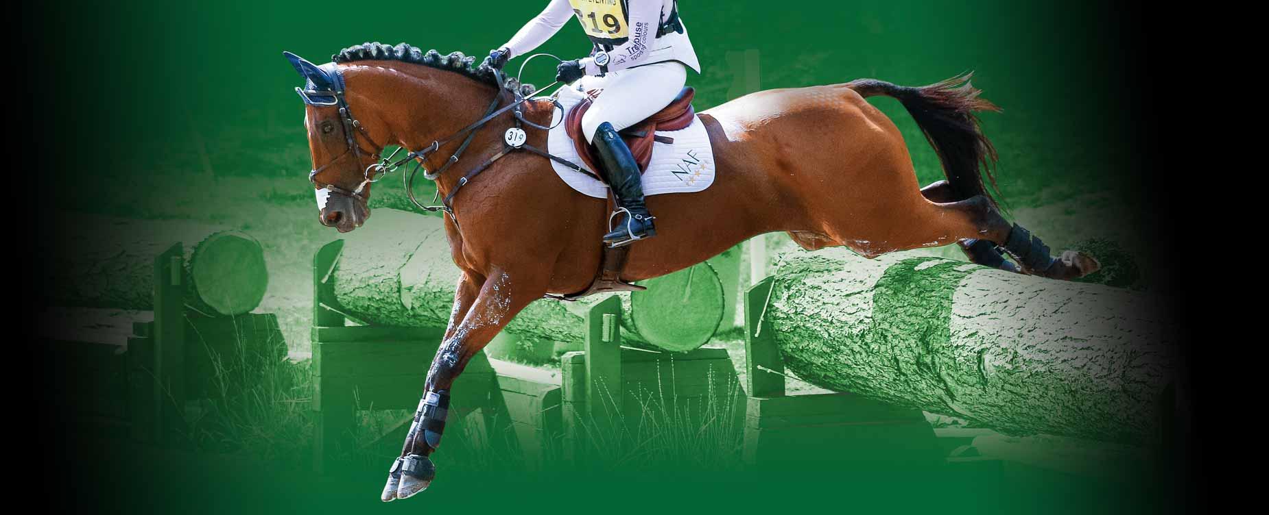 Ons doel is om de gezonde gewrichten van uw paard te ondersteunen