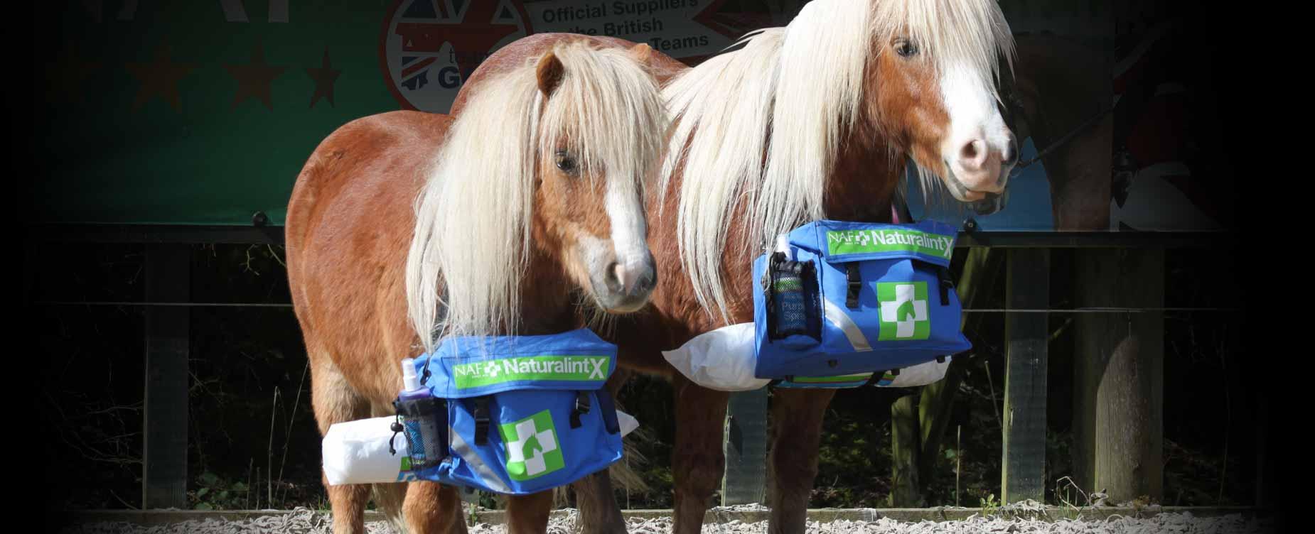 Ons doel is om op natuurlijke  wijze te zorgen voor uw paard
