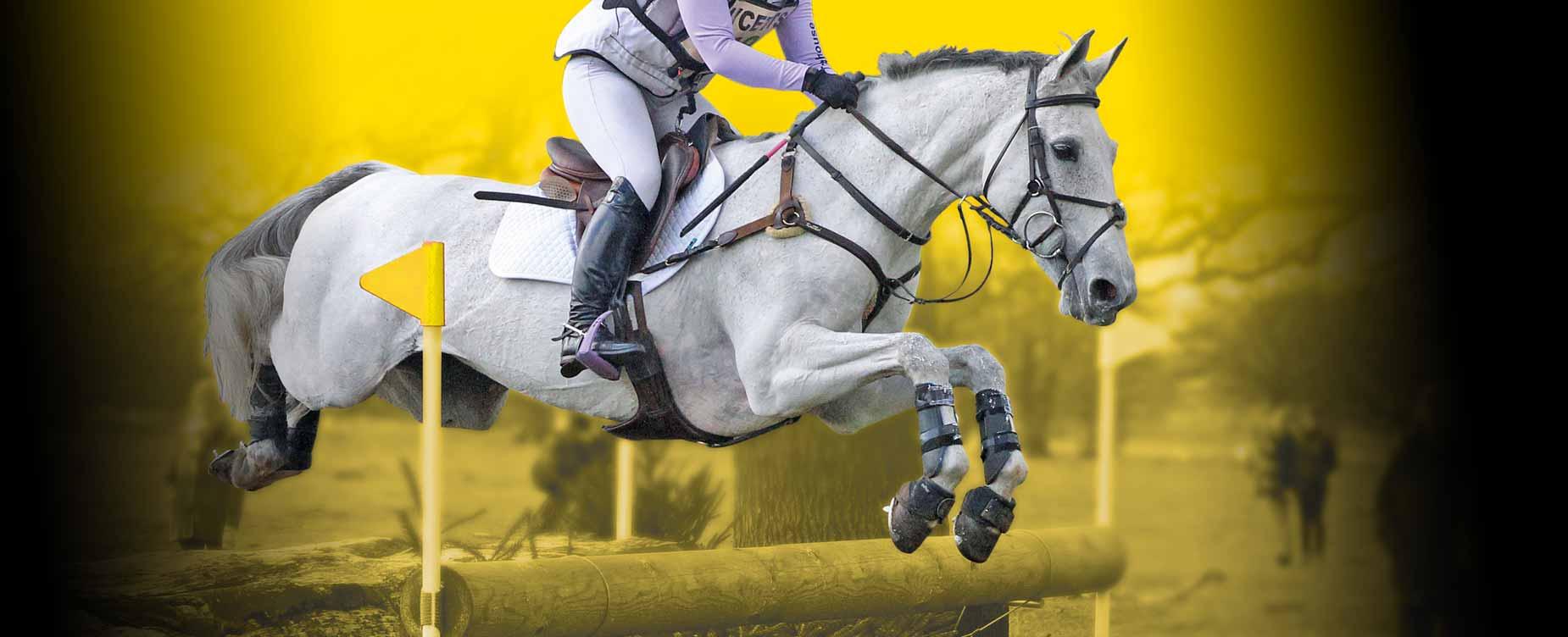 Ons doel is je paard er goed te laten uitzien en zich goed te laten voelen.